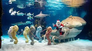 hydropolis underwater resort hotel.  Hydropolis Hydropolis Underwater Hotel Dubai On Resort Hotel O