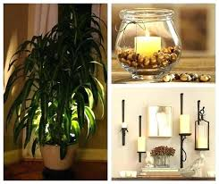lighting for houseplants. Lighting For Houseplants Plant Lamps Indoor Plants Accent  Light Lights House
