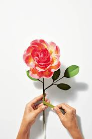 The Exquisite Book Of Paper Flower Transformations How To Make An Eden Rose Paper Art Pinterest Rose