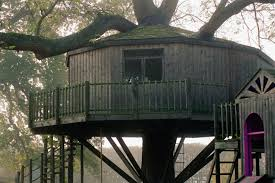 A yurt-style tree house built around one large tree with wrap-around deck
