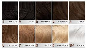 Hair Colour Level Chart Wtf Is Level 10 Hair Arctic Fox Dye For A Cause