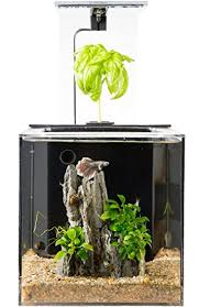 office fish tank. EcoQubeC Aquarium - Desktop Betta Fish Tank For Living Office And Home Décor