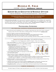 Sales Executive Sample Resume Regional Vp Sales Sample Resume An Expert Resume