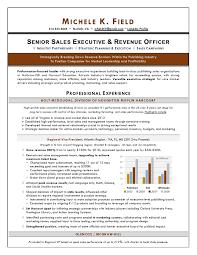Regional Vp Sales Sample Resume An Expert Resume