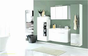 Badezimmer Hochschrank 50 Cm Breit Inspirierend 45 Genial Von