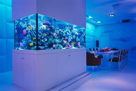 Bodacious Okeanos Aquascaping Custom Fish Ponds Aquarium Designin New York  New Jersey Okeanos Aquascaping Custom Fish