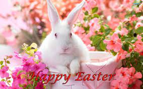 Easter Bunny Desktop Wallpapers (47+ ...