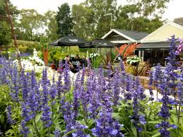 garden supplies melbourne south east. nursery and garden supplies melbourne all the best in 2017 south east