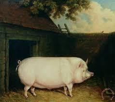 a pig in its sty painting e m fox a pig in its sty art print