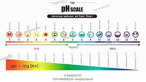 Color Chart For Universal Indicator Universal Indicator Stock Photos And Images Age Fotostock