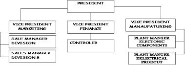 Formal Organizational Chart What Is Formal Organization Definition And Characteristics