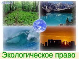 Презентация Экологическое право скачать презентации по Экологии Экологическое право