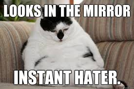 Self-Conscious Cat memes | quickmeme via Relatably.com