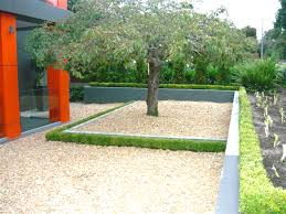 Small Picture Classic Instant Hedges By the metre installed in minutes