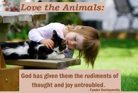 Quotes About Animal Love 40 Quotes Classy Love Animal Quotes