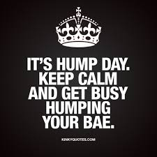 Kinky Quotes A Twitter Its Humpday Keepcalm Weekend Will