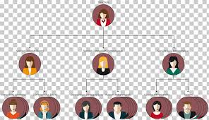Org Chart Graphic Organizational Chart Graphic Designer Industrial Design