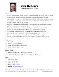 Nobby Resume Sample For Real Estate Agent Adorable Templates