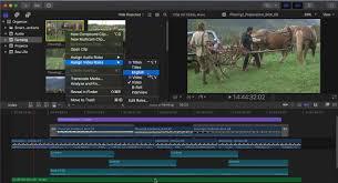 Apple Final Cut Pro X 10 4 Workflow Editing
