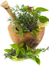 Резултат с изображение за билки