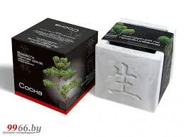 <b>Растение ЭкоДом</b> Вырасти Бонсай дома <b>Сосна</b> В дизайнерском ...