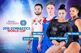 2018 world artistic gymnastics chionships