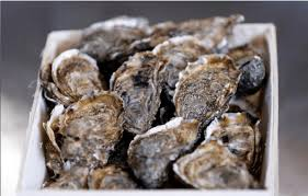 Oyster Vending Machine Delectable Oysters' Vending Machines Launched In France Ikon London Magazine