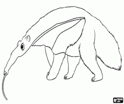 Small Picture Various animals coloring pages printable games