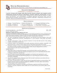 Executive Resume It Director Unique Board Of Directors Resume