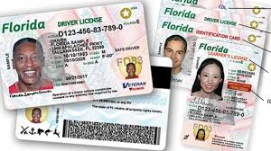 Driver's - License Can Immigrants Get Illegal Florida Forumdaily A