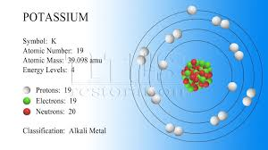 The element potassium's atomic number is 19. Its relative atomic ...
