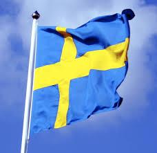 Bildresultat för sveriges nationaldag