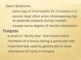 Ch 6 Sec 2 Human Genetic Disorders Ppt Video Online Download