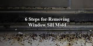 removing mold from the window sill