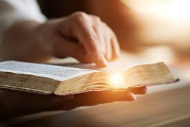 2019 Daily Bible Reading Plan Free Download Read Bible In