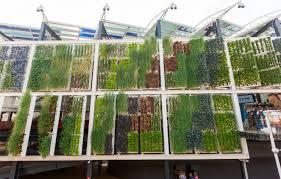 world s largest wall farm