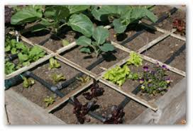 Small Picture Free Square Foot Gardening Plans