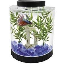 office desk aquarium. Gold Fish Bowl Aquarium 4 White LED Light Half Moon Betta Tank Home Office Desk | EBay
