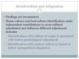 social identity theory  assimilative responses 18