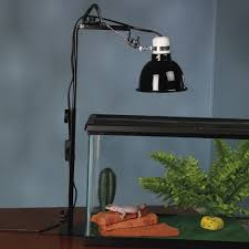 reptile habitat lighting zoo med repti lamp stand and brooder lamp at drs foster and smith