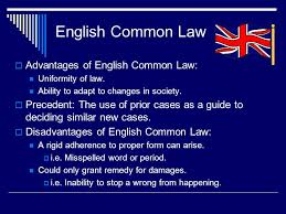 Common Law Essay English Law The Court System Essay Homework Example 1063 Words