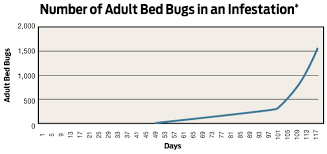 Aging Bed Bug Infestations How Long Have They Been Here