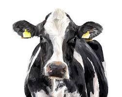 dairy cow art print holstein friesian cow painting cow art cow gift farm print farmhouse decor farmer gift dairy farmer