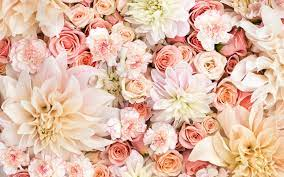 Cute Floral Desktop Wallpapers - Top ...