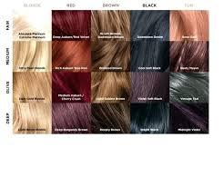 Balayage Color Chart
