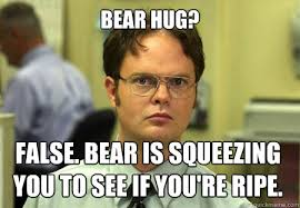 Bear Hug? False. Bear is squeezing you to see if you're ripe ... via Relatably.com