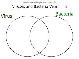 Compare And Contrast Venn Diagram Replication Vs Transcription Dna Rna Venn Diagram Compare And