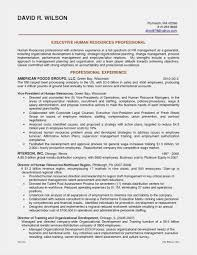 Resume Format Summary Picture Resume Career Summary Examples Ideas