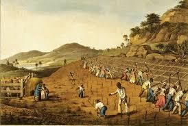 slavery in colonial america essay brinkley chaptersociety and essay topics colonial america
