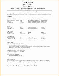 Executive Resume Template Word Unique Cv Format Matchboard